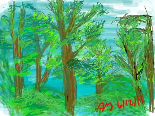 Asheville_trees_final